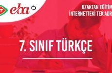 7. Sınıf Türkçe Konu Anlatımı