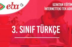 3. Sınıf Türkçe Konu Anlatımı Video
