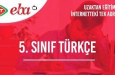 5. Sınıf Türkçe Konu Anlatımı Video