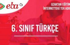 6. Sınıf Türkçe Konu Anlatımı Video